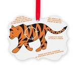 Tiger Facts Picture Ornament
