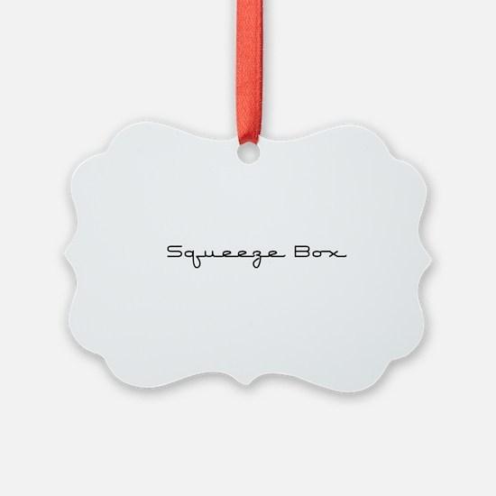 SqueezeBox10x8.png Ornament