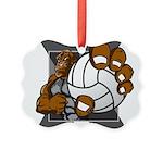 Apex Volleyball Picture Ornament