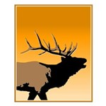 Sunset Bugling Elk Small Poster