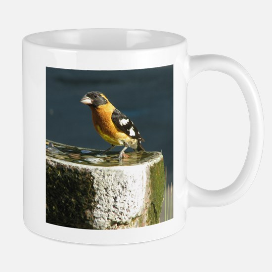 Pretty Black Headed Grosbeak Mug