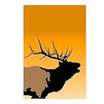 Sunset Bugling Elk Postcards (Package of 8)