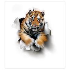 Tiger, artwork Poster