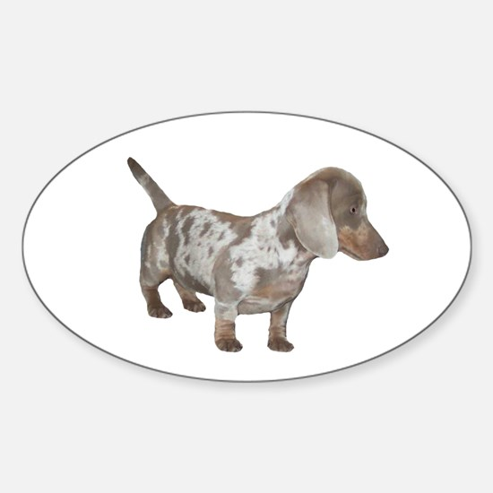 Speckled Dachshund Dog Oval Decal