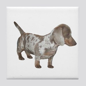 Speckled Dachshund Dog Tile Coaster