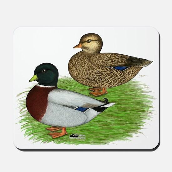 Grey Call Ducks Mousepad