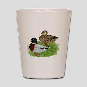 Grey Call Ducks Shot Glass