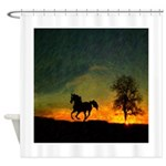 AFTM Old Black Stallion At Sunrise Shower Curtain