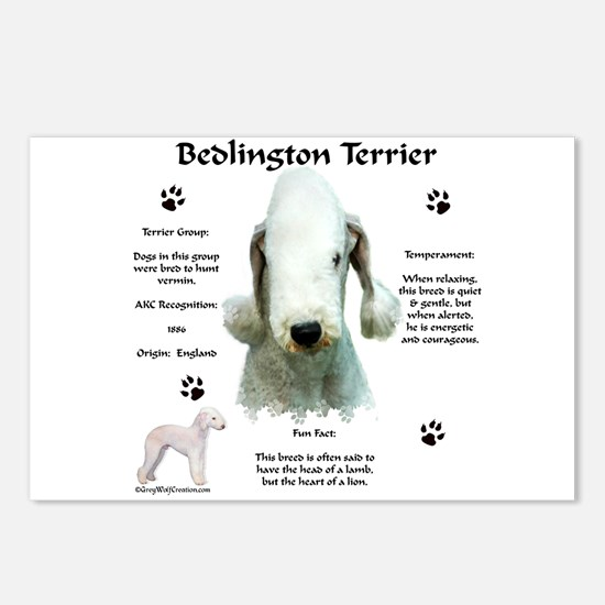 Bedlington 1 Postcards (Package of 8)
