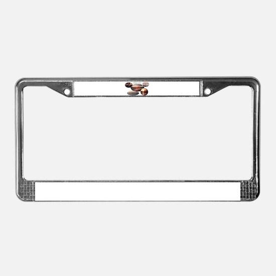 Rockport Texas 2 License Plate Frame