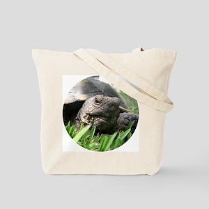 Helaine's Desert Tortoise Tote Bag