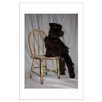 Black Miniature Schnauzer Puppy Large Poster