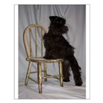 Black Miniature Schnauzer Puppy Small Poster