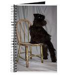 Black Miniature Schnauzer Puppy Journal