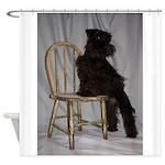 Black Miniature Schnauzer Puppy Shower Curtain