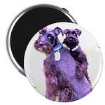 Black Schnauzer Puppy Love Magnet