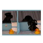 Black Mini Schnauzer Bath Postcards (Package of 8)