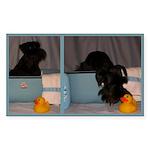 Black Mini Schnauzer Bath Sticker (Rectangle 10 pk