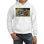 Vintage Pedal Cars Hooded Sweatshirt