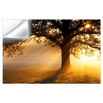 Oak tree at sunrise Wall Decal