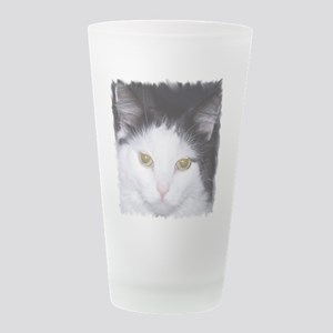 sebastian-face-2 Frosted Drinking Glass
