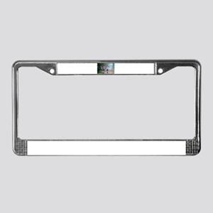I walked El Camino, Spain, wal License Plate Frame