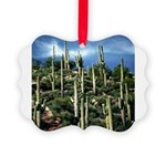 Many Saguaros In Az Picture Ornament