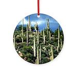 Many Saguaros In Az Ornament (Round)