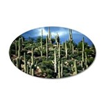 Many Saguaros In Az 35x21 Oval Wall Decal