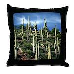 Many Saguaros In Az Throw Pillow