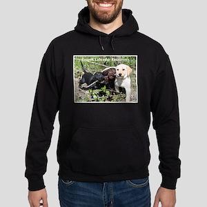 Eromit- Lab puppies Hoodie (dark)