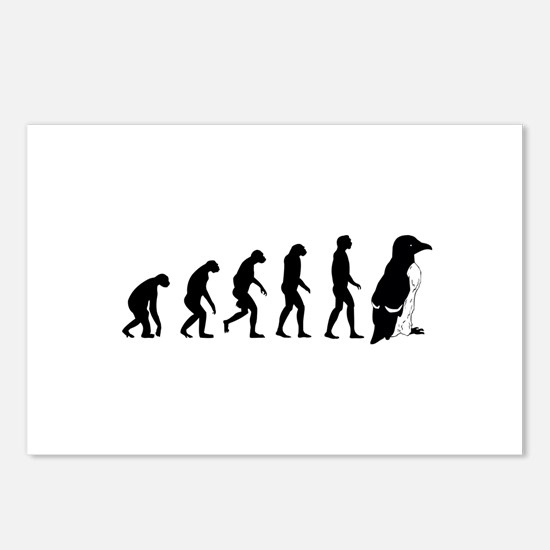 Humans evolve into penguins Postcards (Package of