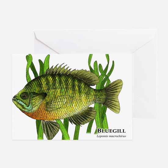 Bluegill Greeting Card