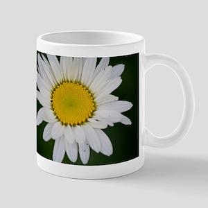 Daisy in the Morning Mug