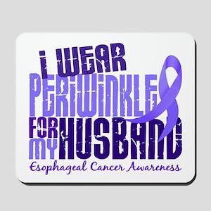 I Wear Periwinkle 6.4 Esophageal Cancer Mousepad