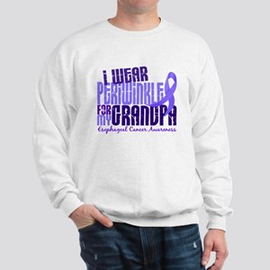 I Wear Periwinkle 6.4 Esophageal Cancer Sweatshirt