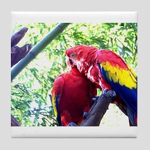 Scarlet Macaws Tile Coaster