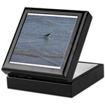 Down by the Seashore Keepsake Box