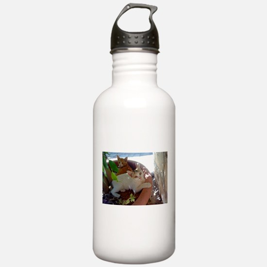 Givat Shaul Cat 77 Water Bottle