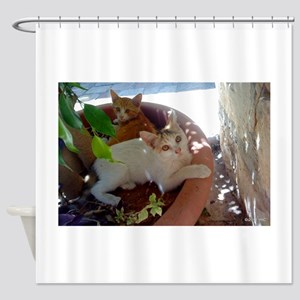 Givat Shaul Cat 77 Shower Curtain