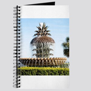 Charleston SC Waterfront Park Journal