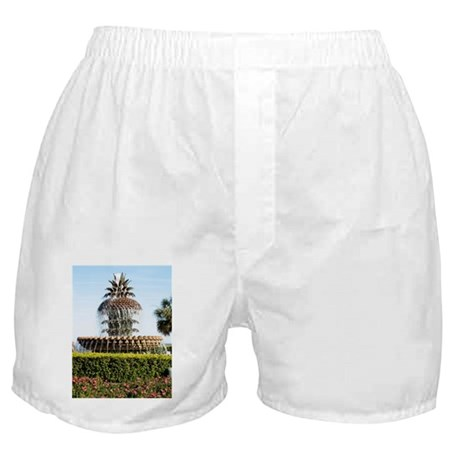 Charleston SC Waterfront Park Boxer Shorts