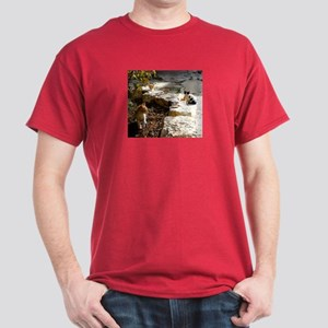 Givat Shaul Cats 15 Dark T-Shirt