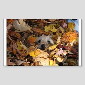 Cairn Terrier Sticker (Rectangle 10 pk)