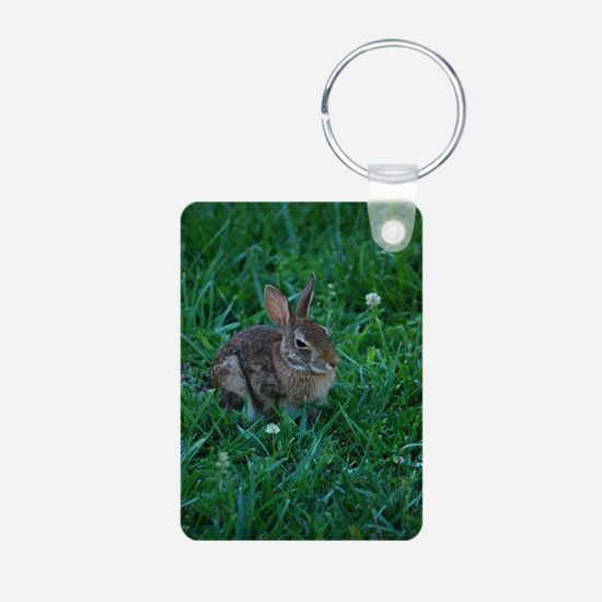 Napping Bunny Keychains