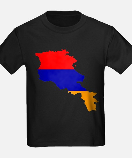 Armenia Flag and Map T