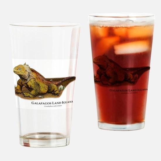 Galapagos Land Iguana Drinking Glass