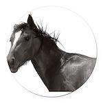 Horse Round Car Magnet
