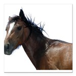 Horse Square Car Magnet 3