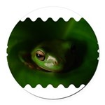 Lazy Frog Round Car Magnet